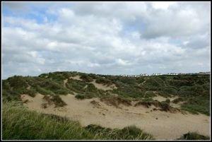 La dune préservée